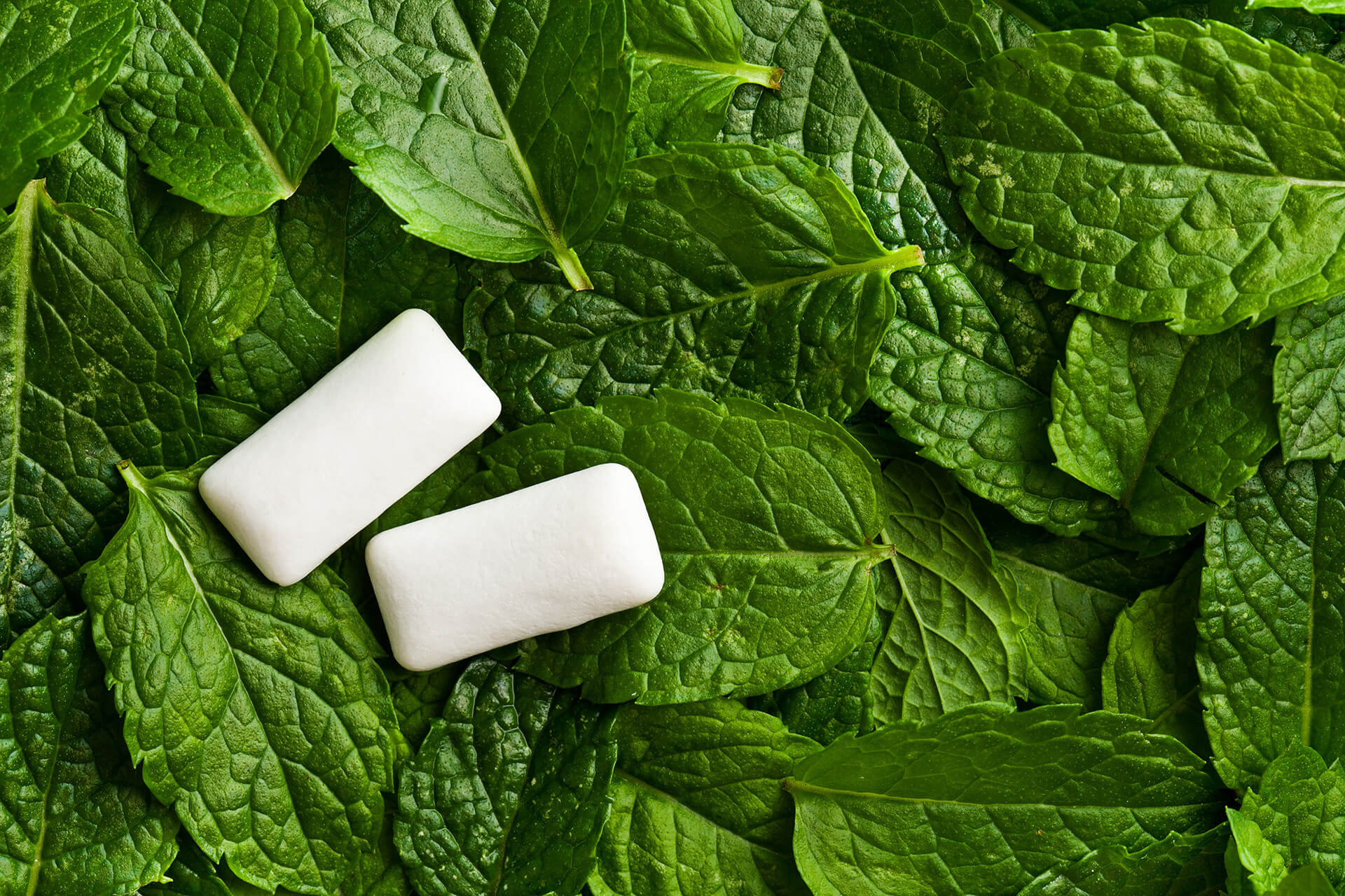 make perfect soft mint centres
